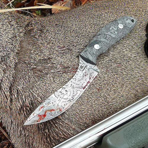 Evo Model in Damasteel put to work on a roe deer.
